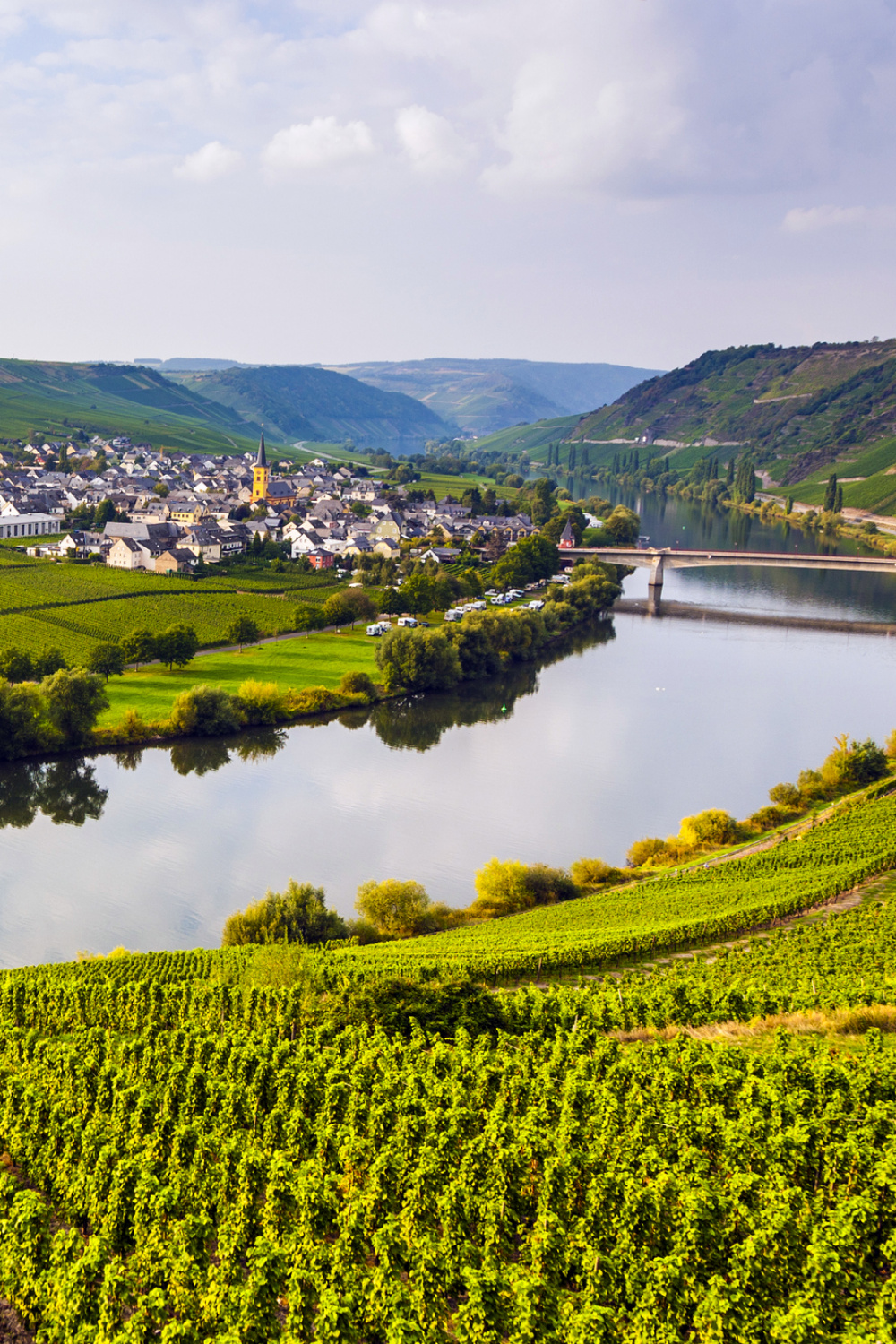 The tributaries of the Rhine